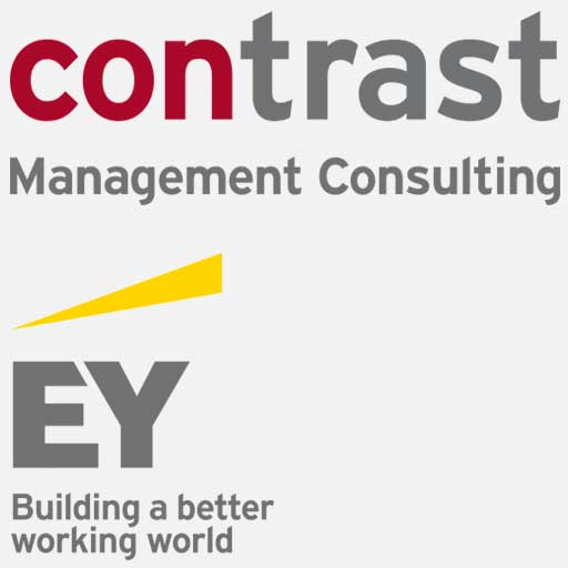 Contrast Ernst & Young Management Consulting